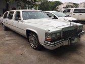 /tin-nhanh/cadillac-fleetwood-brougham-limousine-30-nam-tuoi-xuat-hien-tai-sai-gon-286